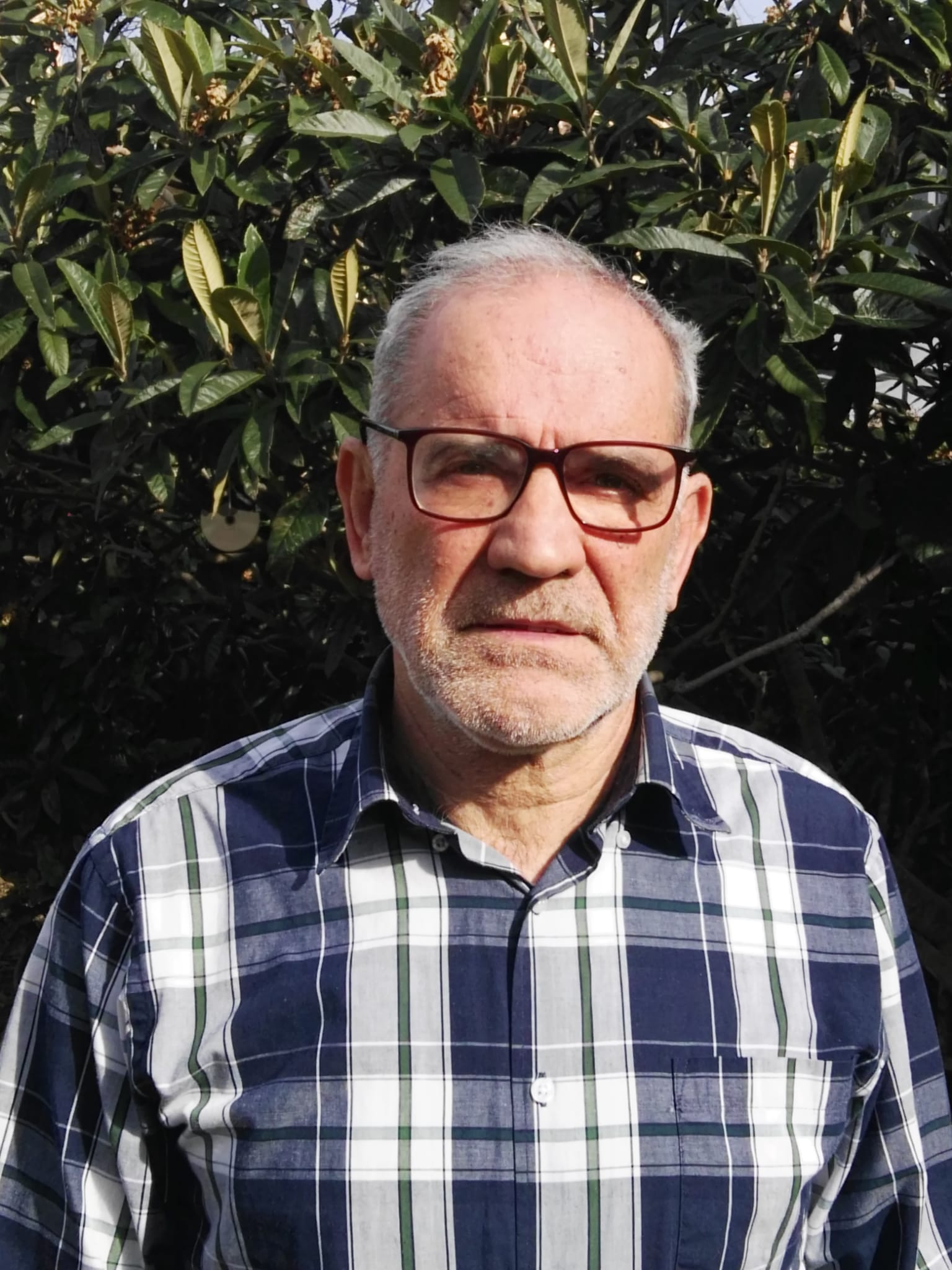 Jaume Pera Arenas